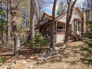 Splash Mountain Amazing 4 BR Luxury Chalet w/ Private Pool/Spa/Games