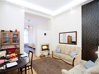 City center Budapest, private, elegant, WiFi, fireplace: Fireplace Holidays home