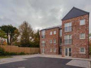 Stunning Modern 2 Bed Apt Free Wifi & Parking, holiday rental in Lisburn