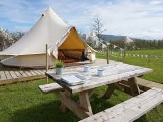 Mellow Yellow Bell Tent - Family Zone