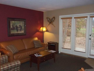 Homey condo w/ wood-burning fireplace, whirlpool tub - close to mountain!