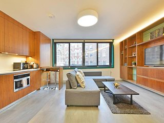 Amazing and modern two bedroom apt in the heart of Soho / Central London