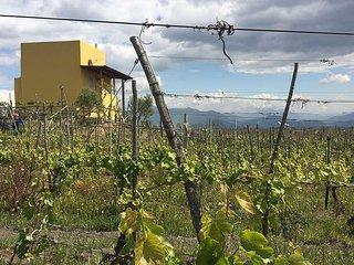 Vesuvio INN - Rifugio Wine Lover
