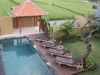 6 BR Private Pool Villa - Breakfast W/Lovely Staff   (jcm64)