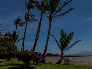 Molokai Shores 110