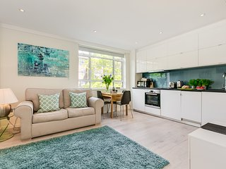 Stunning central London Chelsea Serviced apartment