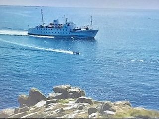 Why not book a Boat trip to the Scilly Isles