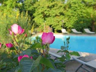 Luxury historic 7 bed villa in Tuscany. Sleeps 20