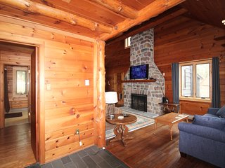 Quaint Log Cabin on Wooded 1/2 with WIFI, Cable, Stone Fireplace, Secluded area