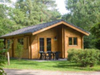 Finse bungalow voor 4 personen