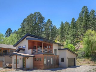 NEWLY CONSTRUCTED Contemporary Home between Durango and Purgatory Resort