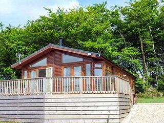 11 Cedar Lodge, Tavistock on the edge of Dartmoor National Park