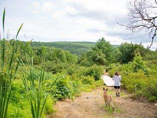 Tentrr Signature Site - Clove Valley Creek