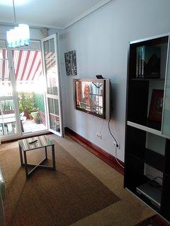 Salón con TV de plasma de 42