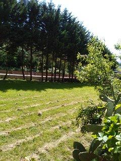 Vistas soleadas, al jardín y montaña