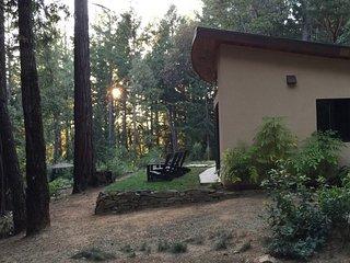 Amazing New House in the Santa Cruz Redwoods.