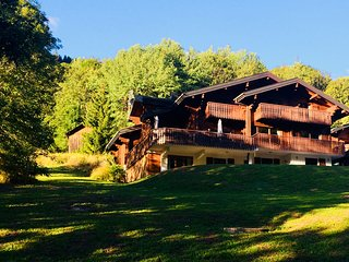 Luxury Alpine Chalet for 10-14 people. Hot tub & sauna. Chatel, France