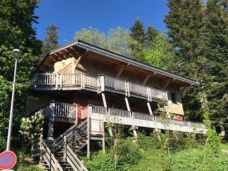 Magnifique chalet neuf, spa, sauna, terrasses Sud