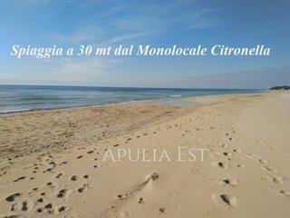 Monolocale Citronella a due passi dal mare