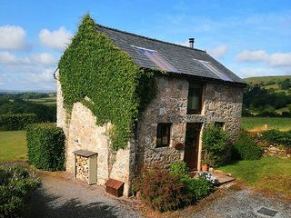 Widecombe Cottage -  Widecombe in the Moor - Dartmoor - Devon