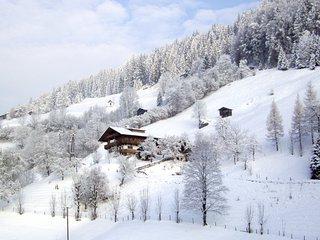 Einfanghof (WIL691)