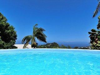 Suite Ambalaba Piment Zoizeau pour 4 pers. piscine privative et vue sur l'ocean