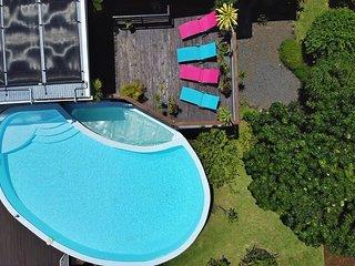 La piscine, le solarium et une partie du jardin (dont le letchi très rempli en saison) vus du ciel