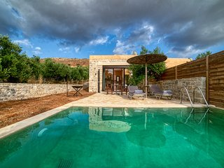 Olive luxury suites with private swimming pool, indoor jacuzzi and kitchen