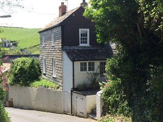Beautiful Grade 2 listed Fisherman's cottage in Port Isaac called  Boskensa