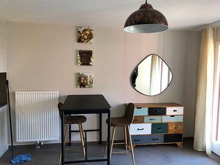 Amazing Studio In Lausanne Close To Epfl Unil