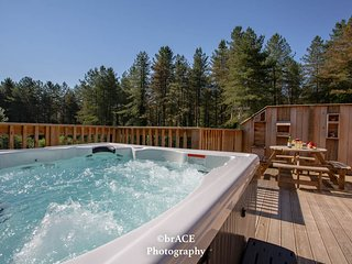 Squirrel Lodge, Clements End, Coleford - HOT TUB