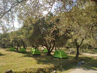 Cika's Camping