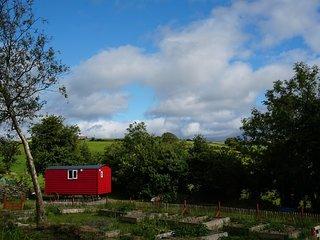Ballyroe Glamping - Shepherd's Hut 'Saoirse'