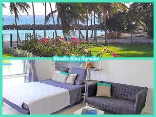 Studio Bleu Caraibe - Vue mer - Acces direct a la plage - Wifi gratuit