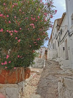 Casco antiguo de Oliva