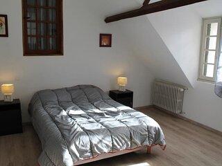 Appartement 200m des Thermes du Saint Roch à LA ROCHE POSAY