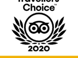 Travelers award for 2020