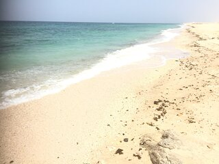 Beautiful beachfront room with stunning sea views  + free breakfast. Sur, Oman