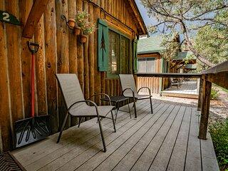 Colorado Bear Creek Cabin 2