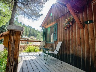 Colorado Bear Creek Cabin 1