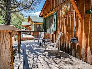 Colorado Bear Creek Cabin 5