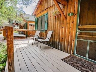 Colorado Bear Creek Cabin 3