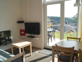 Nice home in St. Andreasberg with Sauna, WiFi and 1 Bedrooms (DAN945)