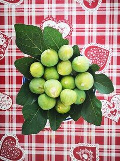 Frutta di stagione di benvenuto del nostro orto