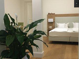 Studio-Apartment mit Kitchenette, HD-Altstadt bei der Stadthalle