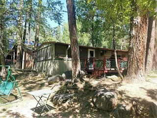 River Bear Cabin