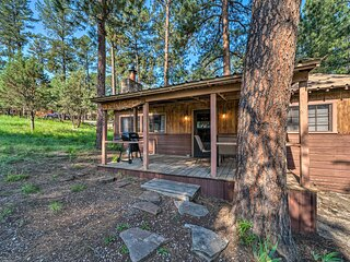 NEW! Peace & Privacy in the Woods <1 Mi to Midtown