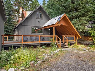 Dog-friendly, two-story cabin w/private gas grill, large lawn, deck