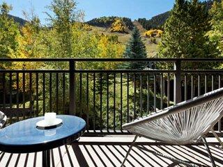 Balcony W/ Great Aspen Mtn View. Walk to Heart of Downtown Aspen & Skiing. Wood