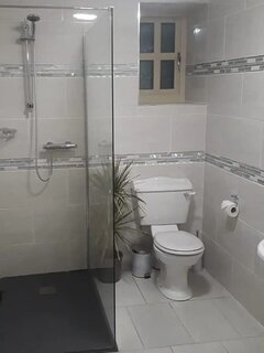 Downstairs bathroom containing a walk-in shower.